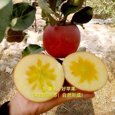广西壮族自治区南宁市青秀区阿克苏冰糖心苹果 90mm以上 条红 光果