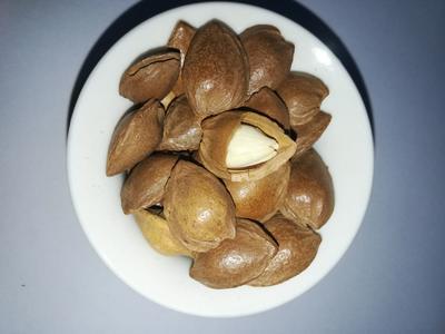 这是一张关于杏核 的产品图片