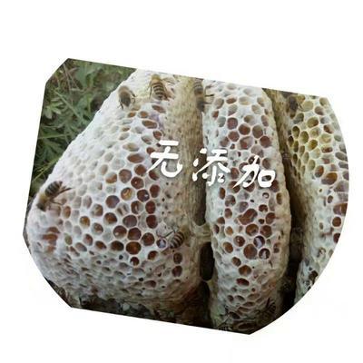 四川省阿坝藏族羌族自治州九寨沟县土蜂蜜 塑料瓶装 2年以上 100%
