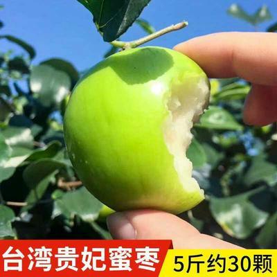 福建省漳州市平和县贵妃枣 脆甜5斤30个内