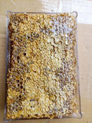 广西壮族自治区钦州市钦北区土蜂蜜 盒装 2年以上 100%