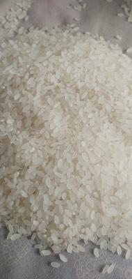 这是一张关于长粒香大米 一等品 一季稻 粳米 的产品图片