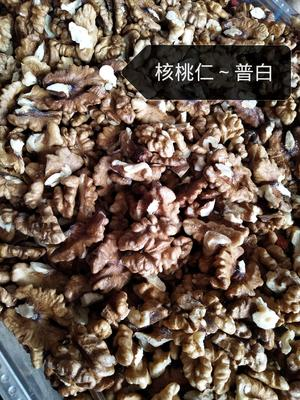 山西省太原市小店区核桃仁 6-12个月
