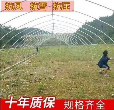 天津静海县单体棚