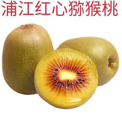四川省成都市蒲江县红心猕猴桃 便宜没好货