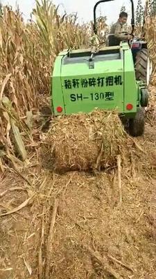 山东省菏泽市郓城县玉米秸秆青储机  玉米秸秆捡拾打捆机
