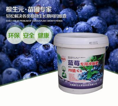 这是一张关于氨基酸肥料  蓝莓树苗专用冲施肥的产品图片