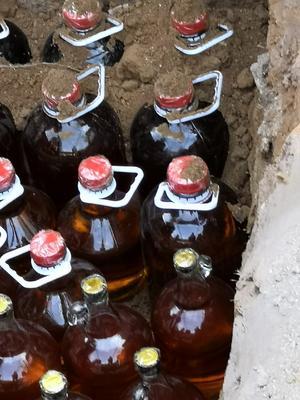 这是一张关于枣酒 50度以上 的产品图片