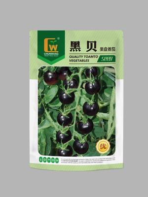甘肃省酒泉市肃州区黑金刚番茄种子  ≥85% ≥98% 常规种 水果番茄--黑贝