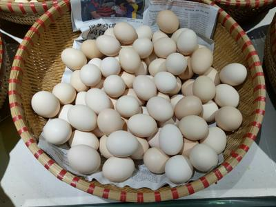 广东省广州市花都区土鸡蛋 食用 箱装