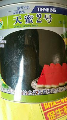 河南省商丘市睢阳区天蜜二号黑皮西瓜 二倍体杂交种 ≥85%