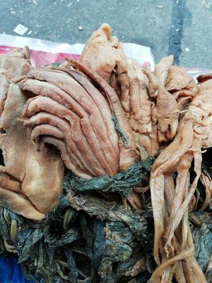 广西壮族自治区柳州市鱼峰区菜头干 24个月以上