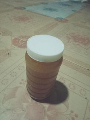 云南省普洱市澜沧拉祜族自治县土蜂蜜 塑料瓶装 2年以上 90%以上