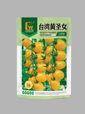 甘肃省酒泉市肃州区樱桃番茄种子 ≥98% 常规种 ≥85%