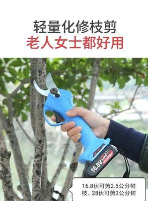 山东省潍坊市奎文区修枝剪刀