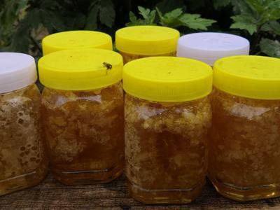 河南省许昌市长葛市巢蜜 塑料瓶装 2年以上 100%