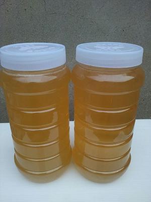 这是一张关于荆花蜜 塑料瓶装 2年以上 95%以上 的产品图片