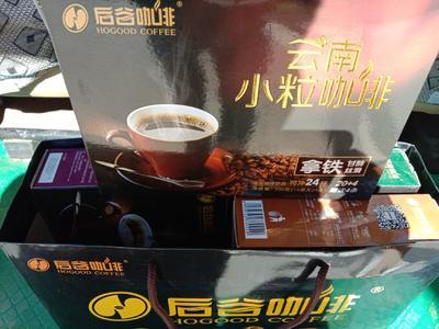 云南省昆明市官渡区速溶咖啡 6-12个月