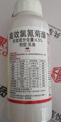 河南省郑州市金水区高效氯氰菊酯  乳油 瓶装 4.5%,500ml