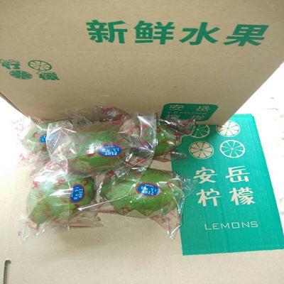 四川省资阳市安岳县青柠檬 1.6 - 2两
