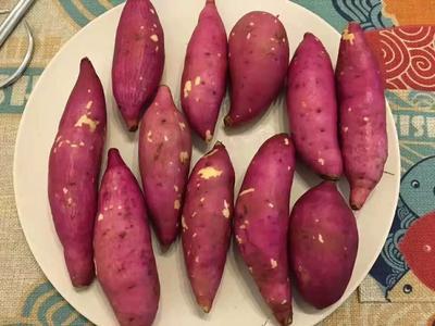 这是一张关于板栗薯 3两以下 红皮 的产品图片