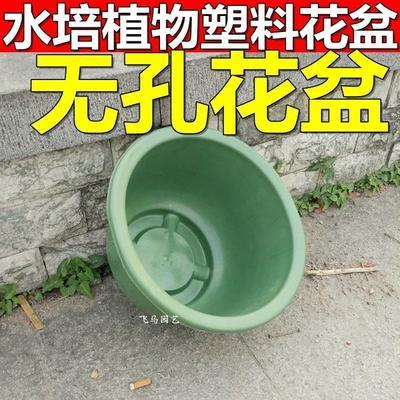 广东省佛山市南海区花钵/花箱