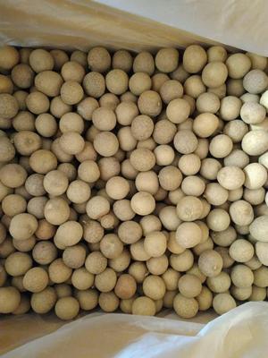 这是一张关于莆田桂圆干 优等 袋装 带壳 的产品图片