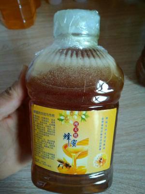 广西壮族自治区钦州市浦北县荔枝蜜 塑料瓶装 2年以上 100%
