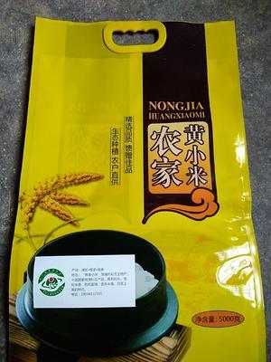 山东省潍坊市安丘市有机富硒小米