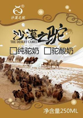 内蒙古自治区巴彦淖尔市临河区骆驼奶