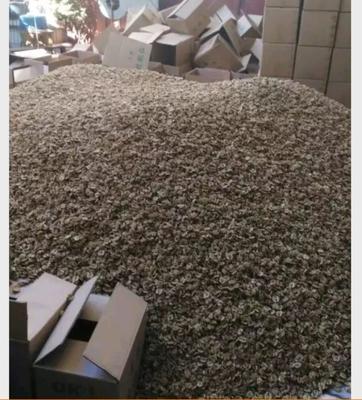 这是一张关于云南漾濞核桃 的产品图片