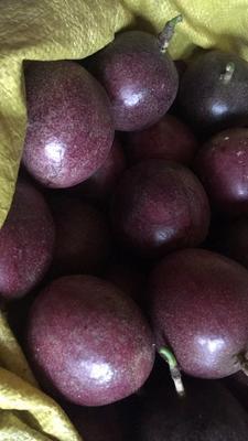 广西壮族自治区贵港市平南县紫红色百香果 40克以下
