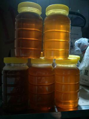 广西壮族自治区钦州市灵山县荔枝蜜 塑料瓶装 2年以上 100%