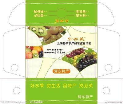 广东省佛山市南海区水果礼盒