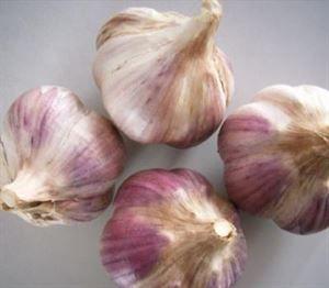 云南省昆明市官渡区红皮大蒜 混级统货 多瓣蒜