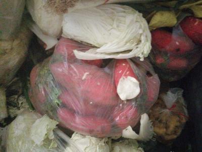 上海松江区红皮萝卜 1~1.5斤