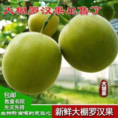 广西壮族自治区桂林市永福县大棚新鲜罗汉果 2 - 3两
