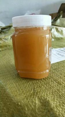 广西壮族自治区贵港市平南县结晶蜂蜜 塑料瓶装 2年 100%