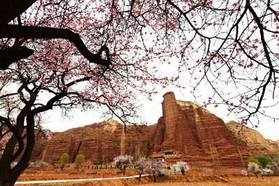 甘肃省临夏回族自治州东乡族自治县薄皮核桃