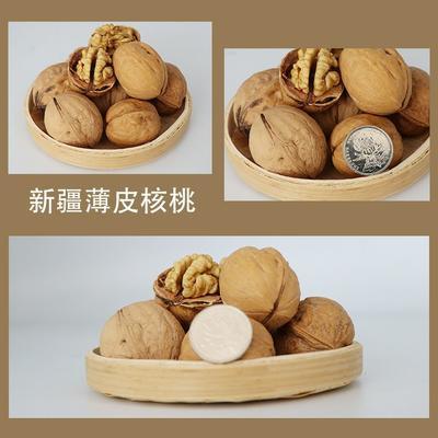 这是一张关于薄皮核桃  中果优质货源。的产品图片