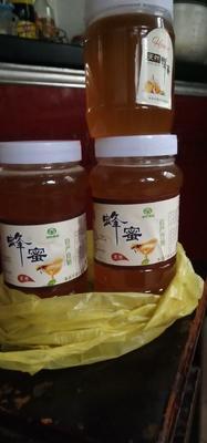 浙江省台州市临海市土蜂蜜 塑料瓶装 2年 98%