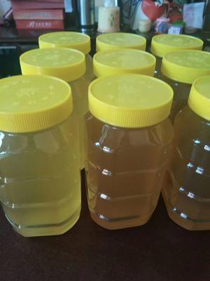 湖南省衡阳市祁东县意蜂蜂蜜 塑料瓶装 2年 95%以上