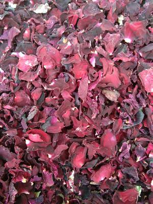 云南省红河哈尼族彝族自治州开远市食用玫瑰