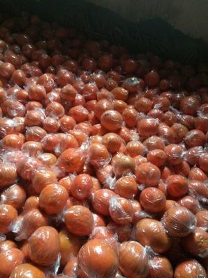 这是一张关于纽荷尔脐橙 60 - 65mm 4-8两 的产品图片