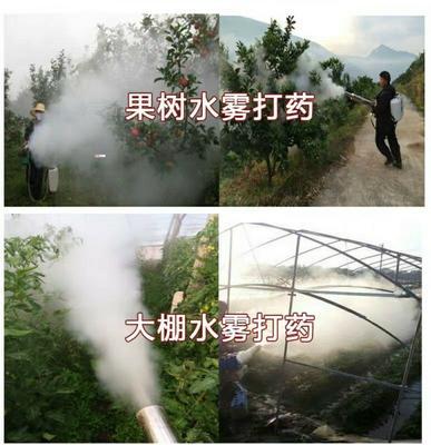 浙江省金华市永康市喷雾器  高配双管双起动打药机