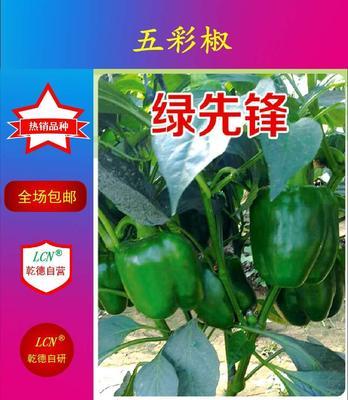 山东省潍坊市寿光市绿先锋 杂交种 ≥97%