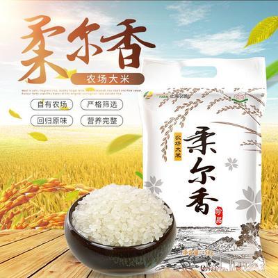 江苏省盐城市大丰市苏北大米 二等品 中稻 粳米