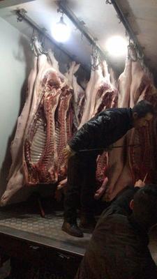 湖南省长沙市长沙县猪肉类 生肉