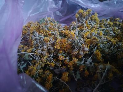 这是一张关于干野菊花 的产品图片