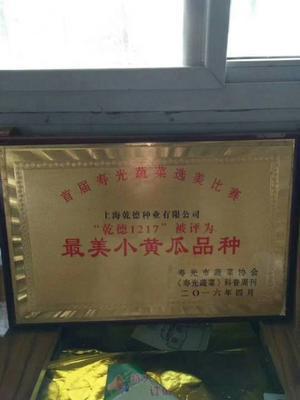 山东省潍坊市寿光市水果黄瓜种子 杂交种 ≥90%